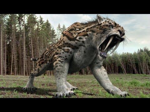 Xxx Mp4 दुनिया के 5 सबसे चौकानेवाले खतरनाक जानवर 5 Most Terrifying Animals You Re Glad Are Extinct 3gp Sex