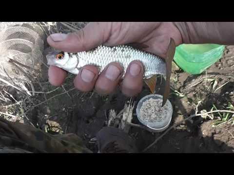 ловля рыбы пикером на малых реках видео