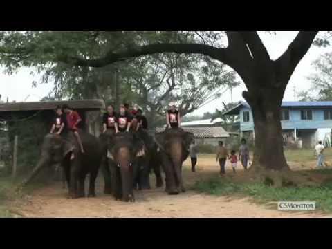 ควาญช้างเด็ก