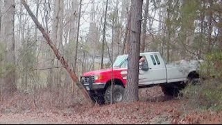 REDNECK TREE REMOVAL - Ford Truck - Custom Ford F150  😤