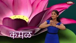 Marathi Rhymes For Children | Lotus Rhyme | मराठी बालगीत | Baby Rhymes Marathi | Action Songs Kids