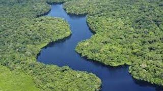 DOCUMENTAL, LA CUENCA DEL AMAZONA   EL RÍO MAS LARGO DEL MUNDO, 6 MIL KILOMETRO