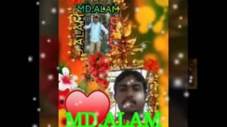MD ALAM M