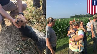 3-year-old girl and dog saved by dog's 'weak bark' - TomoNews