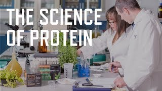 The Science of Protein