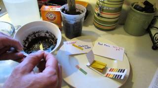 How to Use pH Litmus Strips to Measure pH in Vegetable Garden Soil - The Rusted Garden 2013