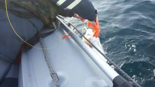 удочка для морской рыбалки мурманск