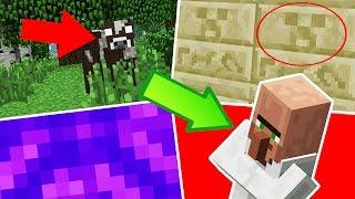 Minecraft: 5 COISAS QUE VOCÊ NUNCA REPAROU NO MINECRAFT!!