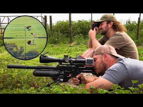 Xxx Mp4 Crazy Long Range Pigeon Hunting 3gp Sex