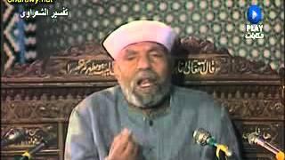 كيفية عرض الناس على الله سبحانه وتعالى يوم القيامة- الشيخ الشعراوى 