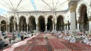 القرآن الكريم : سورة يونس Quran Translation -Ghamdi: Yunus : 10