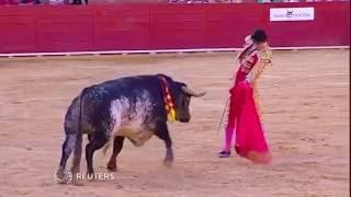Matador killed in Spain bullfight