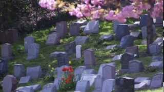 Hartsdale Pet Cemetery HBO: One Nation Under Dog