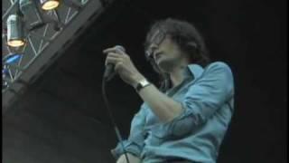 Jarvis Cocker - Big Julie (Live, Pitchfork 2008)