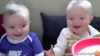very funny twin babies, mom, and monkey