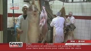 Aïd El Kebir : Sacrifice du mouton à l