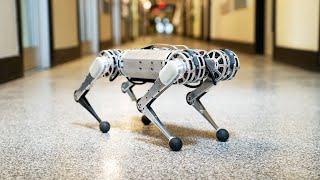 Backflipping MIT Mini Cheetah