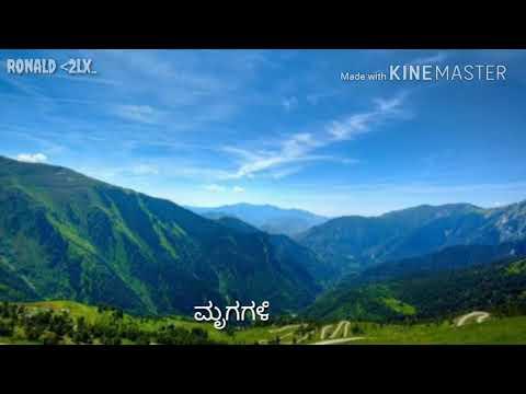Xxx Mp4 Bettada Melondu Kannada Song Whatsapp Status Videos Kannada Whatsapp Status 3gp Sex