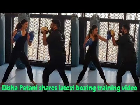 Xxx Mp4 Disha Patani Shares Latest Boxing Training Video Calls It 'don't Mess With Me' 3gp Sex