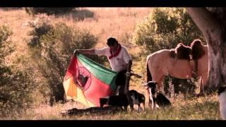 Bandeira Gaúcha Clip
