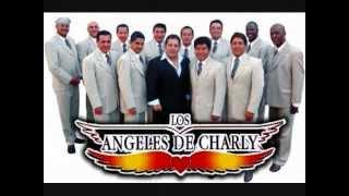 Los Angeles De Charly Mix    Exitos  ----RMTZ