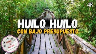 HUILO HUILO EN VERSIÓN ECONÓMICA | CHILE | Diego y Karola Recorriendo el Mundo