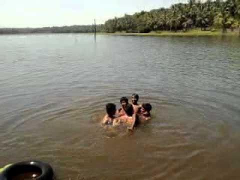 jokers in swimming