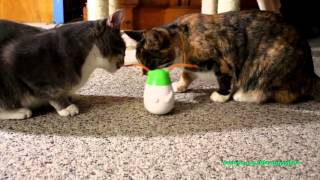 Tha Cats Try a Friskies Pull And Play