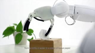 MoRo Robot Introduction