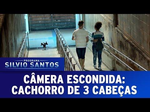 Câmera Escondida (03/07/16) - Cachorro de Três Cabeças (Cerberus Prank)