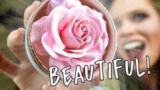 LANCOME BLUSH LA ROSE  POWDER!- AKA THE WORLDS MOST BEAUTIFUL HIGHLIGHT?
