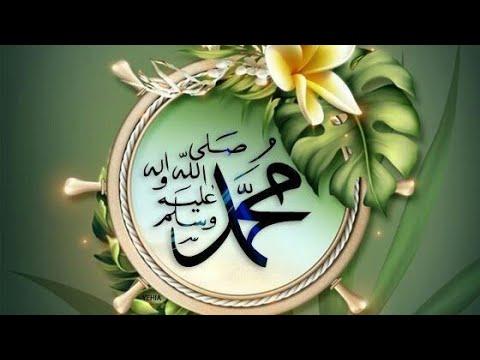 💗Best Islamic WhatsApp status💗|Ya nabi salam alayka|Aqsa Abdul haq