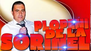SORINEL DE LA PLOPENI - AM UN BULAGARAS DE AUR 2015