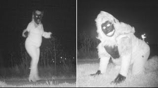 Police setup cameras to catch a mountain lion but captured hilarious people in Kansas