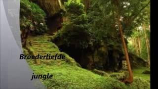 Broederliefde - Jungle remix (HWPO 2 Album ) + lyrics(Doe cc aan)