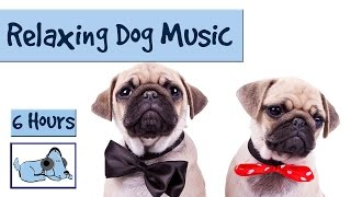 6 HOURS of Relaxing Dog Music. For Separation Anxiety and Restless Pups!