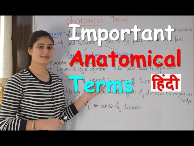 Important Anatomical Terms in Hindi   Common Anatomical Terms   Anatomical Terms for Beginners