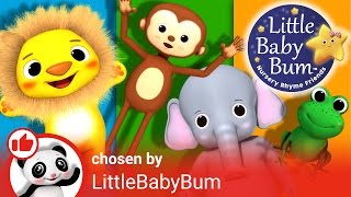 Animals Curated Playlist Intro! | Nursery Rhymes | By LittleBabyBum!