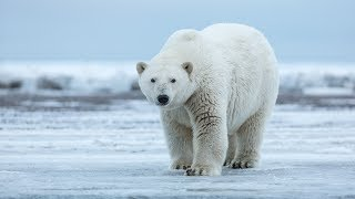 84% View Climate Change As 'Catastrophic' Threat
