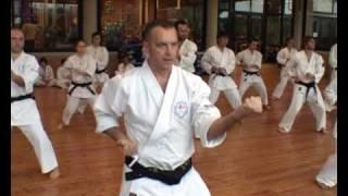 Karate Wado Ryu Maestro Massimo Conti