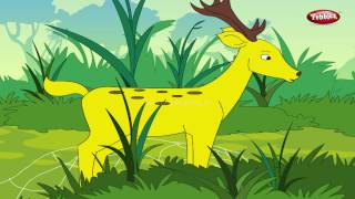Crow and Deer | Moral Stories in English For Kids | English Stories For Children HD