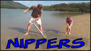 How to catch bait for fishing - Nippers