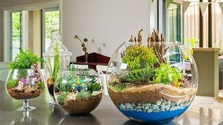 DIY Beautiful Idea with glass bottle garden|| home decorating ideas|| home decor