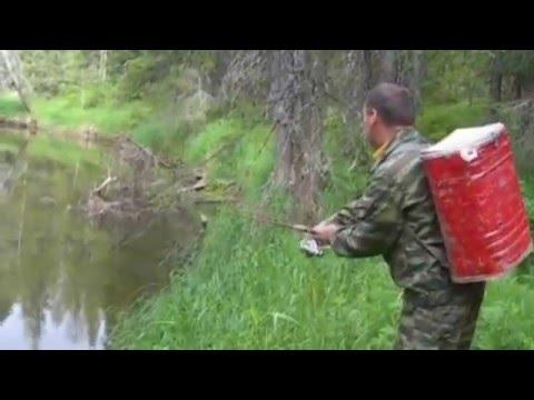 ловля хариуса на малых реках ленка