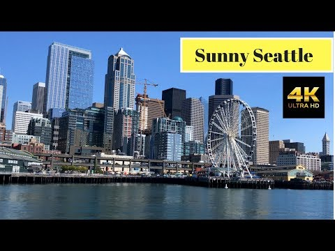 Xxx Mp4 Sunny Seattle Seattle From The Water Expedia Team Event IPhone X Video BikuDAA 3gp Sex