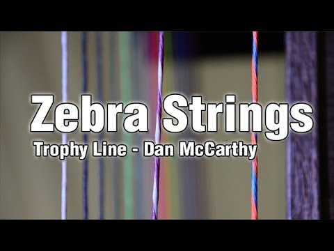 Zebra Strings Trophy -  Dan McCarthy