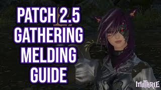 FFXIV 2.5 0538 Gathering Melding Guide (Patch 2.5)