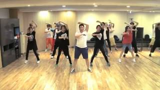 PSY - Gangnam Style Practice (Mirrored)