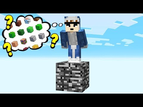 MINECRAFT WITHOUT ANY BLOCKS