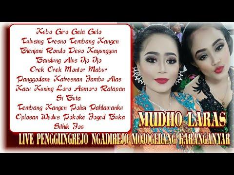 Full Album Nonstop Cokek Koplo Gayeng Mudho Laras Live Penggungrejo Ft Rini Epeledut Mboke Gandhen